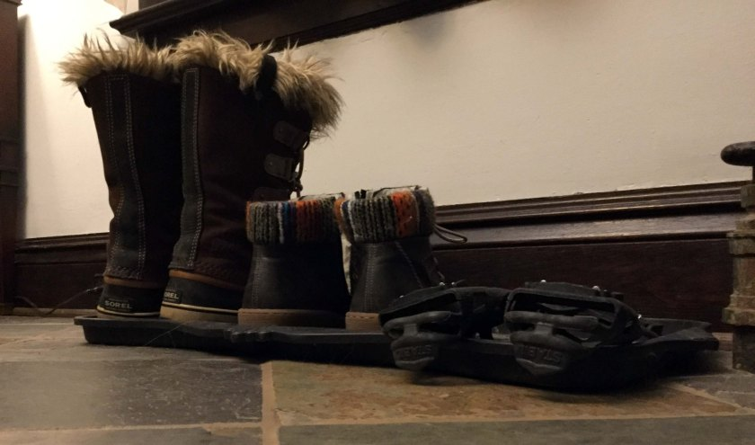 image of three kinds of snow boots
